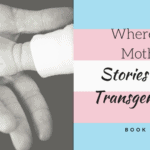 Where's the Mother?: Stories From a Transgender Dad Book Review